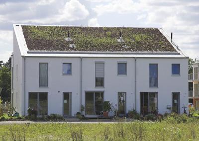 Begrüntes Steildach Mehrfamilienhaus (St.Augustin)
