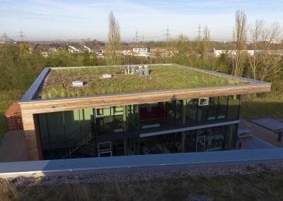 Extensive Dachbegrünung Alanus Hochschule (Alfter)